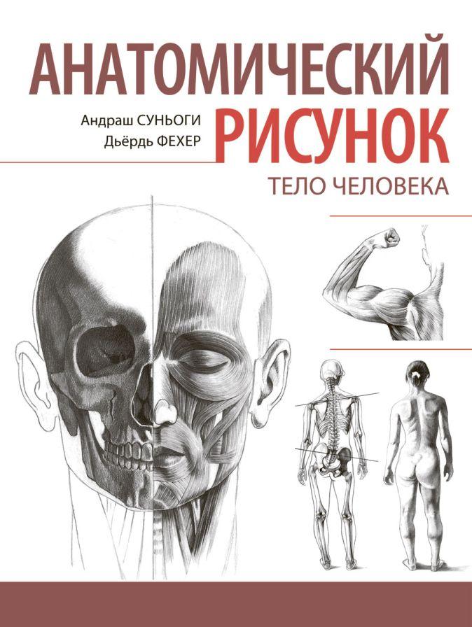 Суньоги А. - Анатомический рисунок. Тело человека обложка книги