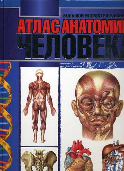 Большой иллюстрированный атлас анатомии человека - фото 1