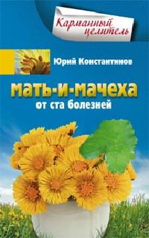 Константинов Ю. - Мать-и-мачеха обложка книги