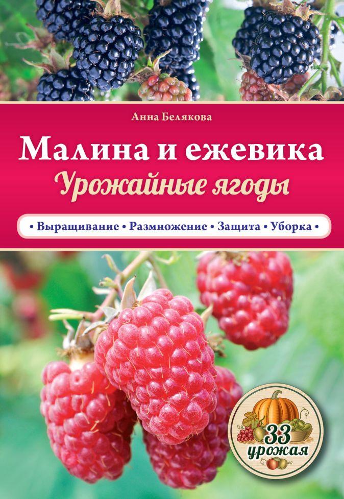 Анна Белякова - Малина и ежевика. Урожайные ягоды обложка книги