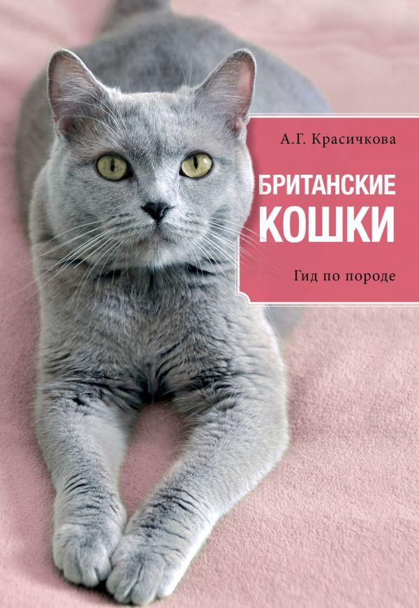 Британские кошки Красичкова А.Г.