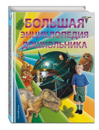 Большая энциклопедия дошкольника (2-е издание) Брюс Д., Харрис Н., Паркер С.