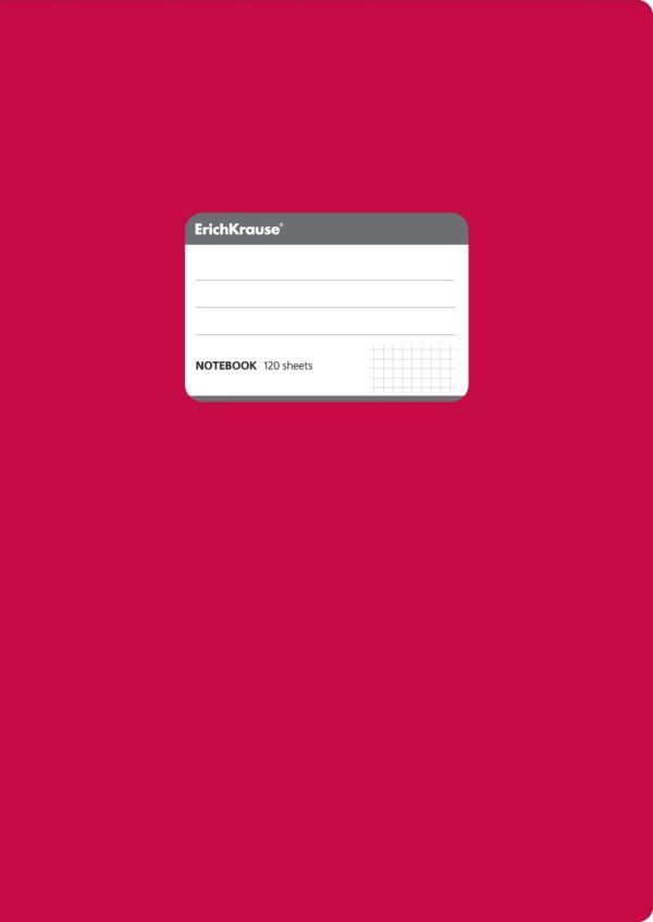 Тетрадь общая А4, ONE COLOR, 120 листов, клетка (Красный)