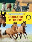 Лошади и пони (Энциклопедия для детей)