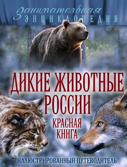 Дикие животные России. Красная книга - фото 1