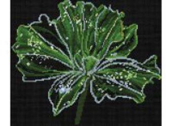 Наборы для вышивания. Неоновый цветок (6010-14 )