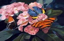 Живопись на цветном холсте 40*50 . Бабочки на цветах (806-AB-C)