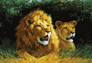 Живопись на холсте 40*50 см. Львы на отдыхе (400-CG)