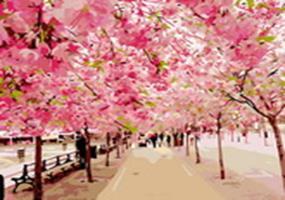 Живопись на холсте 40*50 см. Розовая аллея (548-CG)