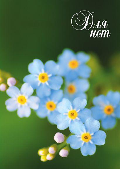 Нотная тетрадь (большая на скрепке). Голубые цветы - фото 1