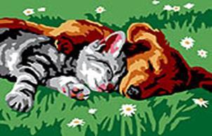 Набор для хобби и творчества Живопись на холсте 30*40 см. Котенок и щенок (210-CE)
