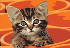 Живопись на холсте 30*40 см. Котенок в кружке (219-CE)