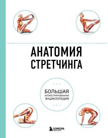 Анатомия стретчинга. Большая иллюстрированная энциклопедия - фото 1