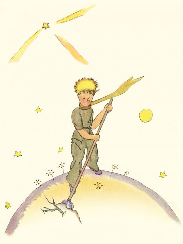 Блокнот Маленький принц. Книга 3 Сент-Экзюпери А.