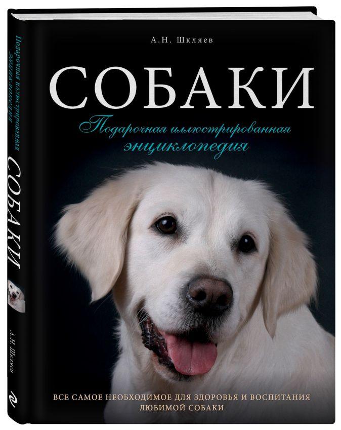 Собаки. Подарочная иллюстрированная энциклопедия Андрей Шкляев