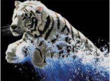 Наборы для вышивания 11ст. Белый тигр (7071-3D)