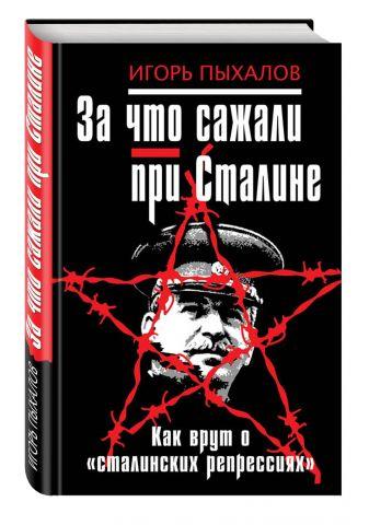 Пыхалов И.В. - За что сажали при Сталине. Как врут о «сталинских репрессиях» обложка книги