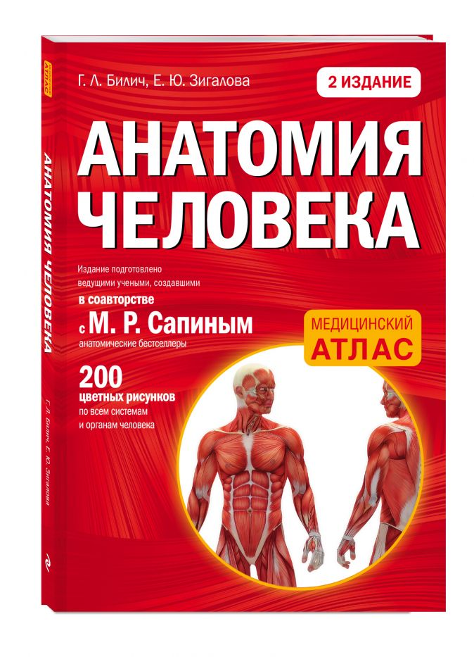 Анатомия человека: 2 издание Г. Л. Билич, Е. Ю. Зигалова