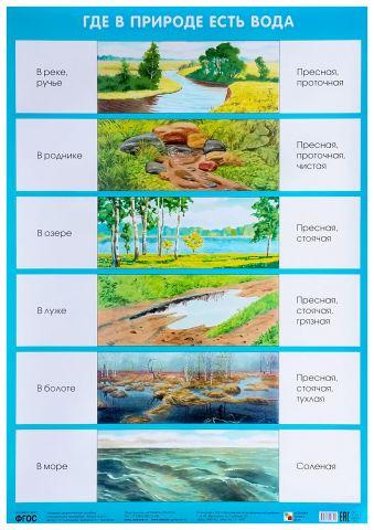 Где в природе есть вода (Плакаты) Николаева С. Н