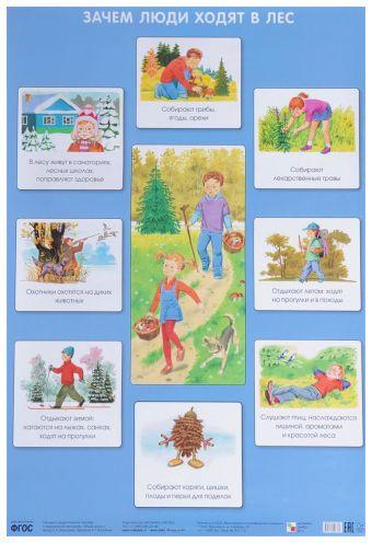 Зачем люди ходят в лес (Плакаты) Николаева С. Н