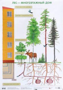 ПЛ Лес — многоэтажный дом