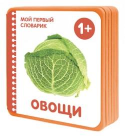Мой первый словарик.  Овощи (EVA) Краснушкина Е.