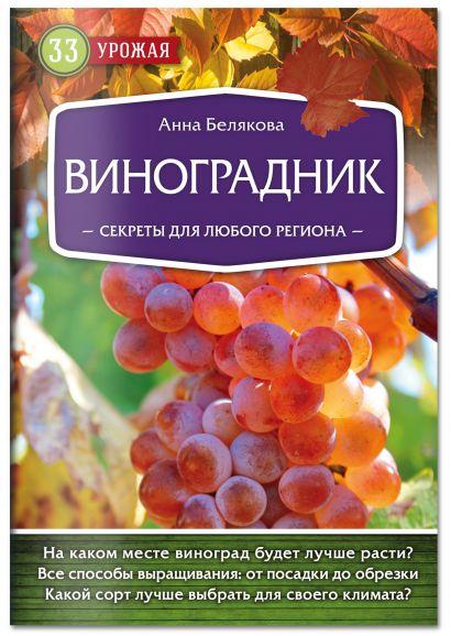 Виноградник. Секреты для любого региона - фото 1