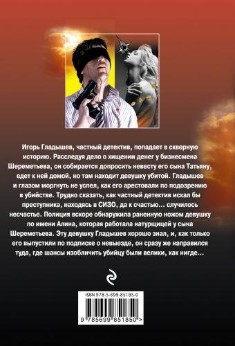 Девушка из низшего общества Макеев А.В.