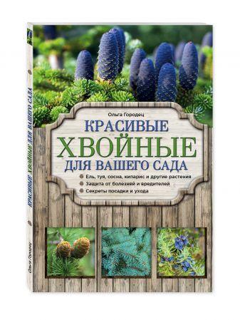 Ольга Городец - Красивые хвойные для вашего сада обложка книги