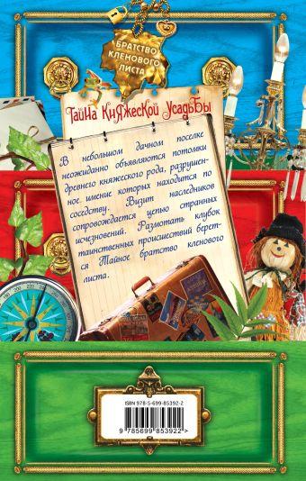 Тайна княжеской усадьбы Иванов А.Д., Устинова А.В.