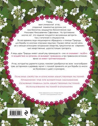 Атлас лекарственных растений. 900 домашних рецептов, которые помогут обрести здоровье Н. Н. Сафонов