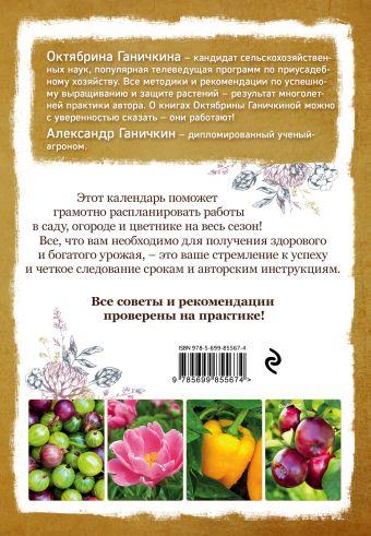 Календарь работ в саду, огороде, цветнике от Октябрины Ганичкиной Октябрина Ганичкина, Александр Ганичкин