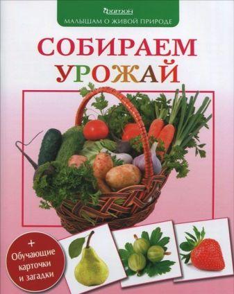 Волцит П.М. - Собираем урожай. (Малышам о живой природе) обложка книги