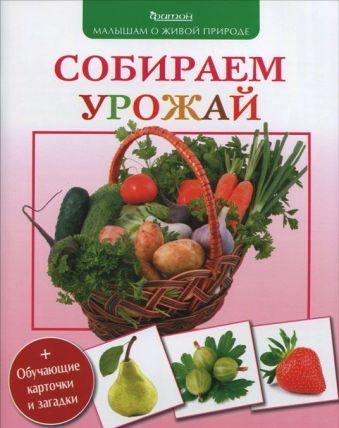 Собираем урожай. (Малышам о живой природе) Волцит П.М.