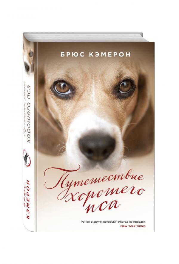 Путешествие хорошего пса Кэмерон Б.
