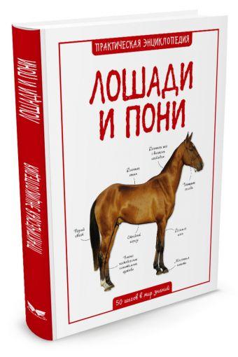 Лошади и пони Бедуаер К.