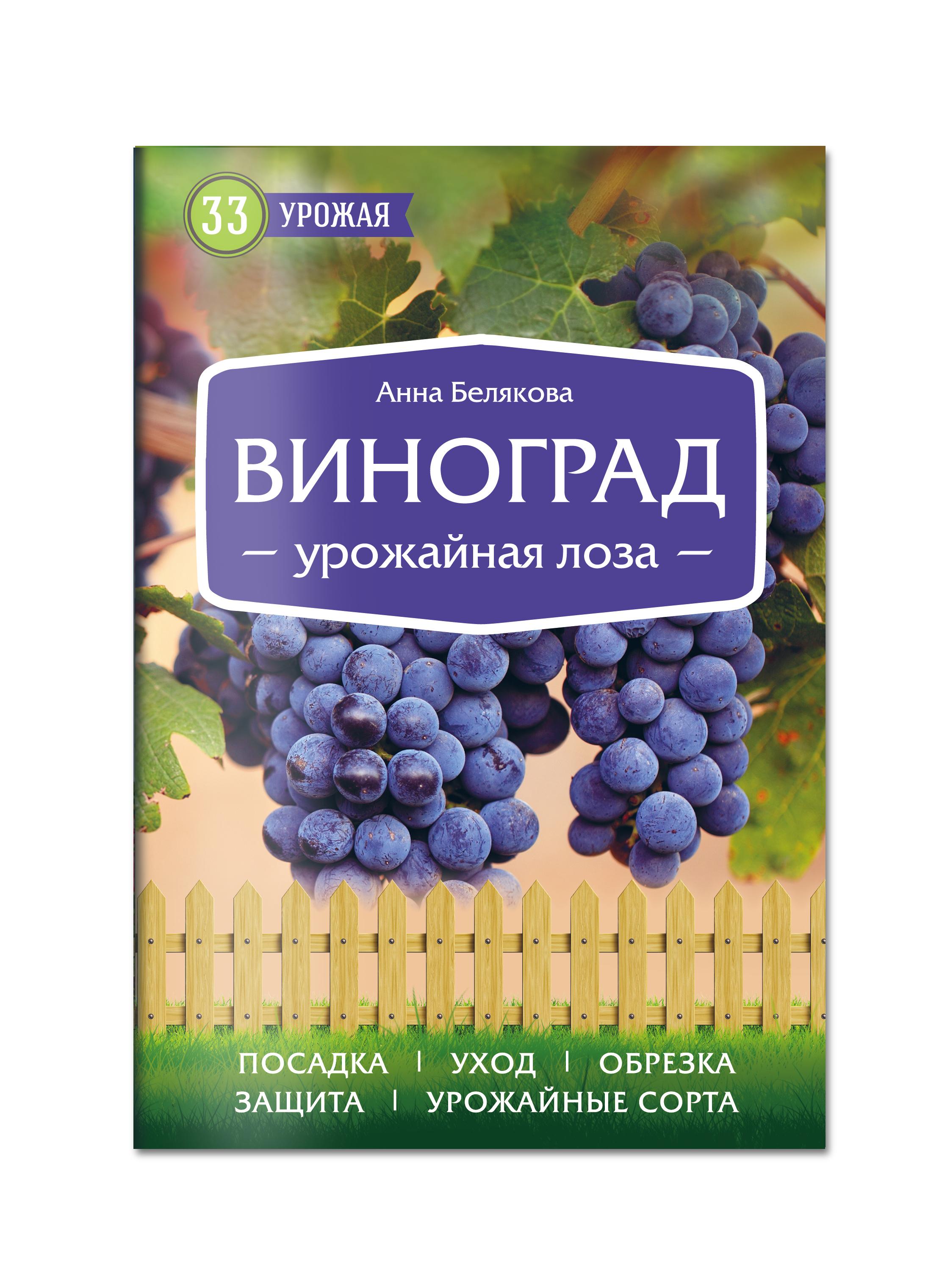 Анна Белякова Виноград. Урожайная лоза (нов.оф)