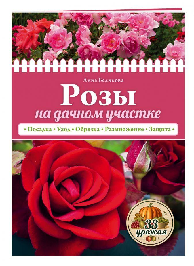 Анна Белякова - Розы на дачном участке (нов.оф.) обложка книги