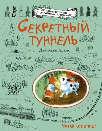 Джорджи Адамс - Секретный туннель обложка книги