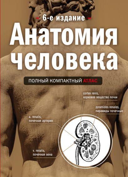 Анатомия человека: полный компактный атлас. 6-е издание - фото 1