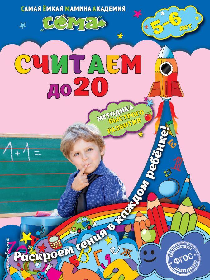С.В. Липина, Т.Г. Маланка - Считаем до 20: для детей 5-6 лет обложка книги