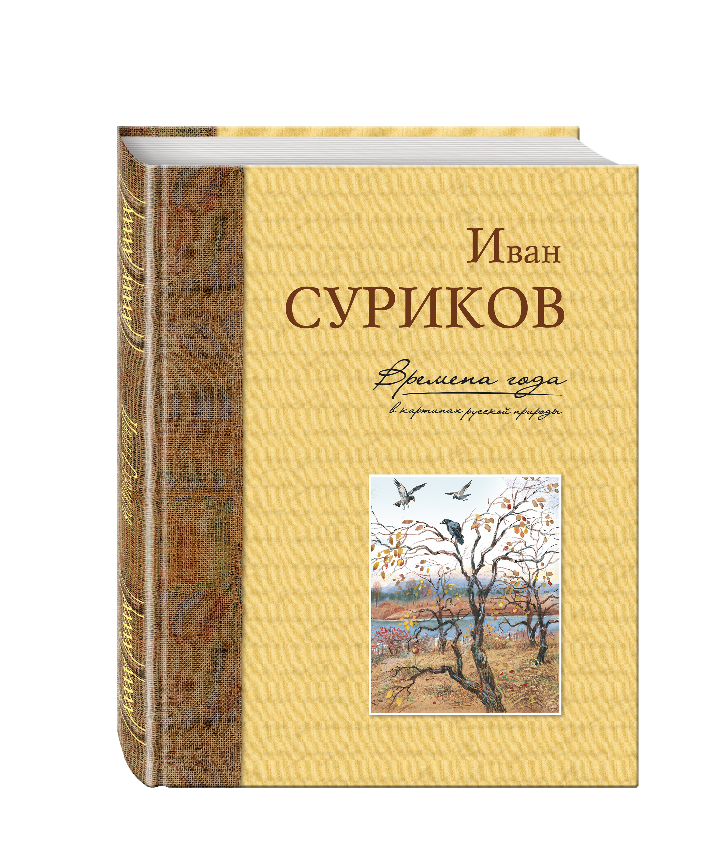Иван Суриков Времена года в картинах русской природы