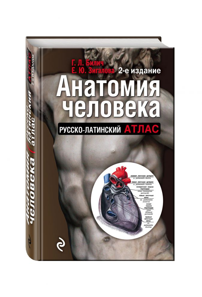 Анатомия человека: Русско-латинский атлас. 2-е издание Билич Г.Л., Зигалова Е.Ю.