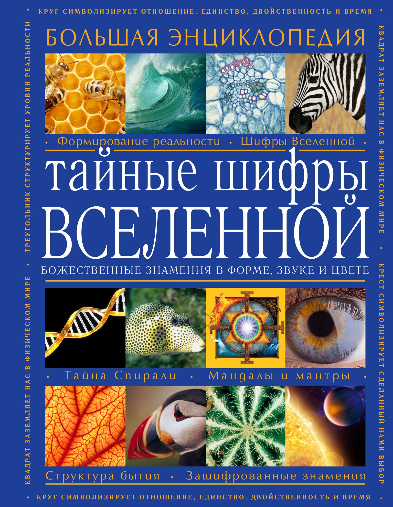 Тайные шифры вселенной. Божественные знамения в форме, звуке и цвете от book24.ru
