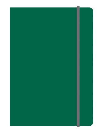 Тетрадь общая на резинке А5, ELEMENTS, 120 л., клетка (Зеленый)