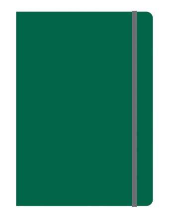 Тетрадь общая на резинке В5, ELEMENTS, 120 л., клетка (Зеленый)
