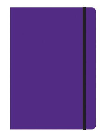 Тетрадь общая на резинке В5, STUDY UP, 120 л., клетка (Фиолетовый)