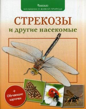 Стрекозы и другие насекомые Волцит П.М.