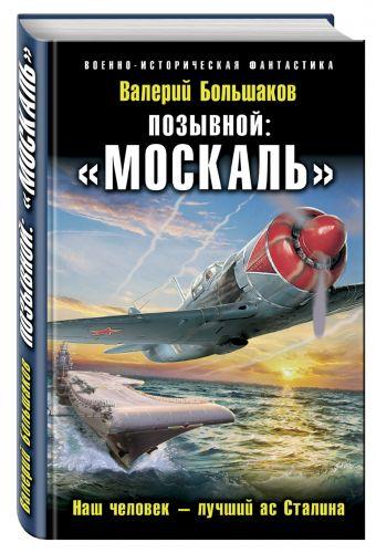 Позывной: «Москаль». Наш человек – лучший ас Сталина Большаков В.П.