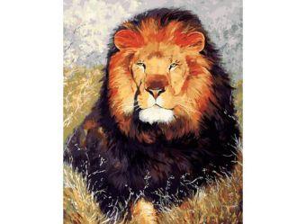 Живопись на холсте 40*50 см. Царь зверей (154-AB)